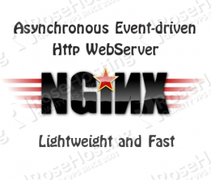 Speed-up NGINX using ngx_pagespeed in CentOS 6 VPS