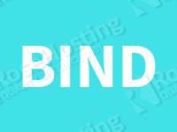 Install, configure and administer BIND 9 on Debian Whezzy