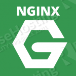 build-nginx-with-pagespeed-module