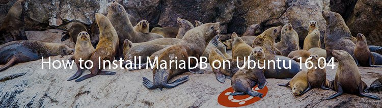 How to Install the MariaDB on Ubuntu 16.04