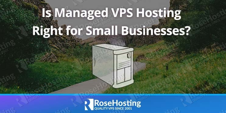 Is Managed VPS Hosting Right for Small Businesses?