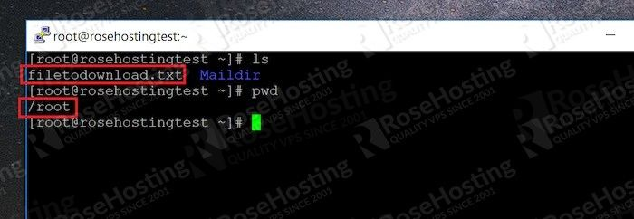 how to download files from server to desktop with ssh