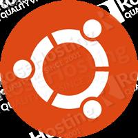apt-get list installed packages