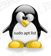 apt list installed packages